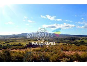 https://www.gallito.com.uy/chacras-venta-cerro-pan-de-azucar-ch038-inmuebles-19470027
