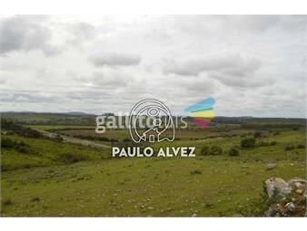 https://www.gallito.com.uy/chacras-venta-maldonado-ch002-inmuebles-19470337