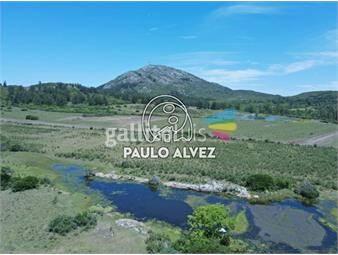 https://www.gallito.com.uy/chacras-venta-pan-de-azucar-ch3027-inmuebles-19471361