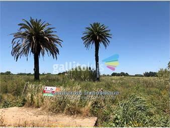 https://www.gallito.com.uy/terreno-de-6-hectareas-inmuebles-13210360