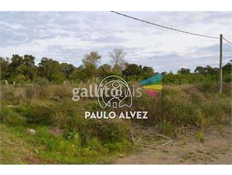 https://www.gallito.com.uy/terrenos-venta-punta-colorada-te879-inmuebles-19476624