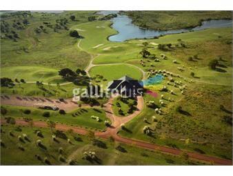 https://www.gallito.com.uy/chacra-n5-en-barrio-privado-carmelo-golf-inmuebles-19476897