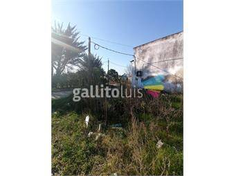 https://www.gallito.com.uy/muy-buen-terreno-en-centro-de-fray-marcos-inmuebles-19488851