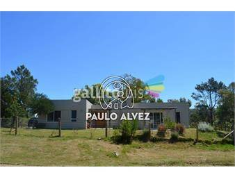 https://www.gallito.com.uy/casas-alquiler-temporal-punta-colorada-270-inmuebles-19490983