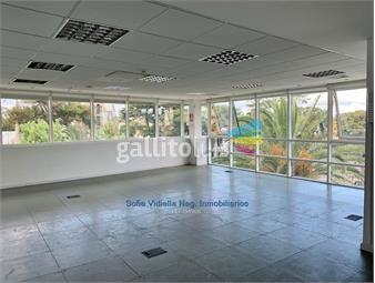 https://www.gallito.com.uy/alquiler-amplia-oficina-en-el-centro-de-carrasco-inmuebles-19115583
