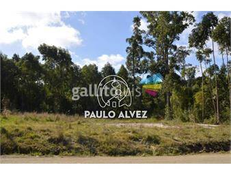https://www.gallito.com.uy/terrenos-venta-punta-colorada-te447-inmuebles-19499539