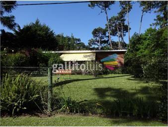 https://www.gallito.com.uy/pleno-san-rafael-construccion-tradicional-inmuebles-17886066