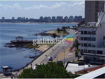 https://www.gallito.com.uy/vista-al-mar-inmuebles-19513994
