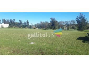 https://www.gallito.com.uy/muy-buen-terreno-en-lomas-de-la-tahona-inmuebles-19542938
