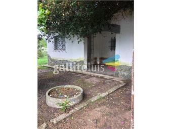 https://www.gallito.com.uy/propiedad-en-3-padrones-1296m2-inmuebles-19166254
