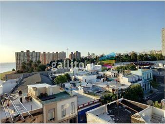 https://www.gallito.com.uy/luminoso-apartamento-frente-a-rambla-y-ejido-inmuebles-17951613