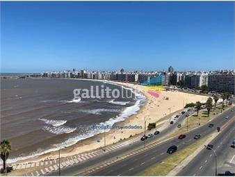 https://www.gallito.com.uy/venta-alquiler-apartamento-en-rambla-de-pocitos-nuevo-inmuebles-19024047