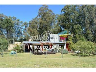 https://www.gallito.com.uy/casas-alquiler-temporal-punta-colorada-085-inmuebles-19557450