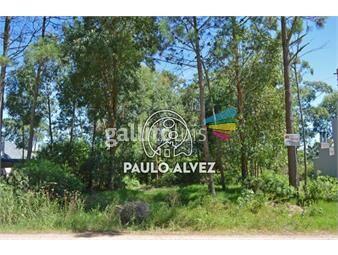 https://www.gallito.com.uy/terrenos-venta-san-francisco-te472-inmuebles-19557462