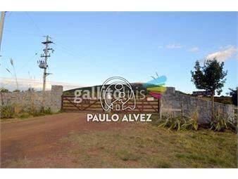 https://www.gallito.com.uy/chacras-venta-cerro-pan-de-azucar-ch025-inmuebles-19557467