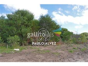 https://www.gallito.com.uy/terrenos-venta-punta-colorada-te641-inmuebles-19557571