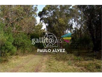 https://www.gallito.com.uy/terrenos-venta-punta-negra-te690-inmuebles-19557584