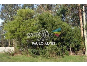 https://www.gallito.com.uy/terrenos-venta-punta-negra-te686-inmuebles-19557586