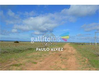 https://www.gallito.com.uy/terrenos-venta-barra-de-portezuelo-te779-inmuebles-19557699