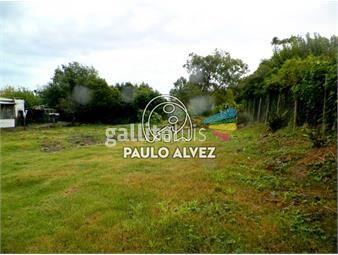 https://www.gallito.com.uy/terrenos-venta-piriapolis-te1082-inmuebles-19557732