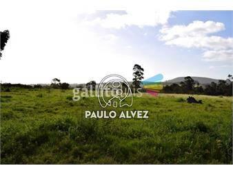 https://www.gallito.com.uy/terrenos-venta-piriapolis-te1085-inmuebles-19557737