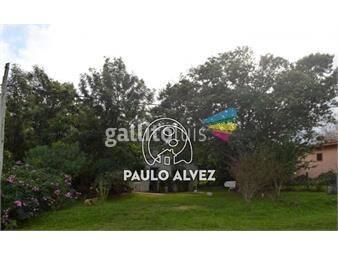 https://www.gallito.com.uy/terrenos-venta-san-francisco-te419-inmuebles-19557738