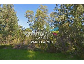 https://www.gallito.com.uy/terrenos-venta-punta-colorada-te704-inmuebles-19557752