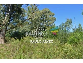 https://www.gallito.com.uy/terrenos-venta-punta-colorada-te706-inmuebles-19557755