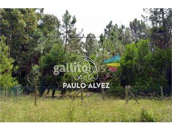 https://www.gallito.com.uy/terrenos-venta-punta-negra-te912-inmuebles-19558392
