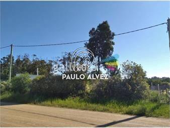 https://www.gallito.com.uy/terrenos-venta-punta-negra-te234-inmuebles-19558970