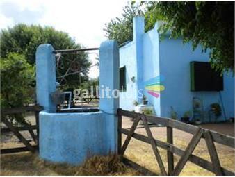 https://www.gallito.com.uy/chacra-de-50-has-en-venta-en-el-colorado-cw57935-inmuebles-11966268