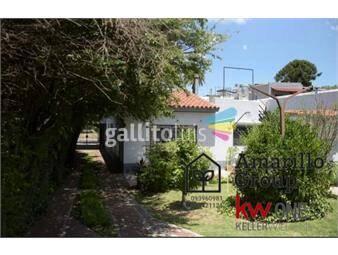 https://www.gallito.com.uy/amarillo-group-vende-excelente-propiedad-en-el-prado-inmuebles-19533767