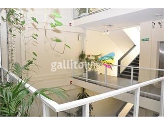 https://www.gallito.com.uy/importante-edificio-para-entrar-sobre-peatonal-sarandi-inmuebles-19595845