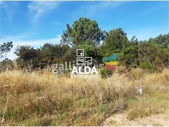 https://www.gallito.com.uy/terreno-en-punta-colorada-inmuebles-14795133