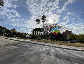 https://www.gallito.com.uy/alquiler-casita-amplia-1-dormitorio-patio-parrillero-estufa-inmuebles-19433953