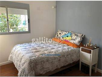 https://www.gallito.com.uy/alquiler-apartamento-pocitos-nuevo-1-dormitorio-inmuebles-19249003