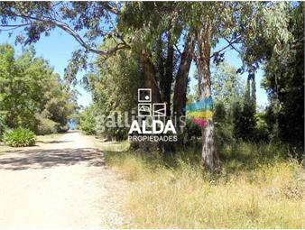 https://www.gallito.com.uy/terreno-en-playa-verde-inmuebles-14660939