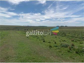 https://www.gallito.com.uy/campo-en-venta-en-durazno-ref-3822-inmuebles-19596396