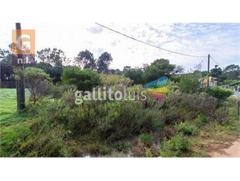 https://www.gallito.com.uy/terreno-en-maldonado-parque-burnet-inmuebles-19641260