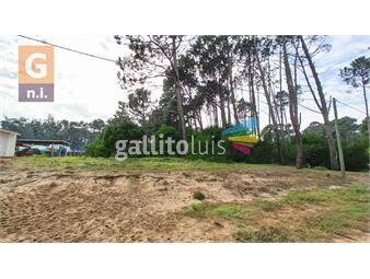 https://www.gallito.com.uy/terreno-en-maldonado-parque-burnet-inmuebles-19641279