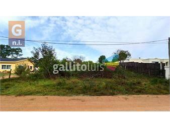 https://www.gallito.com.uy/terreno-en-maldonado-parque-burnet-inmuebles-19641284
