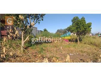https://www.gallito.com.uy/terreno-en-maldonado-el-chorro-ref-4411-inmuebles-19641397