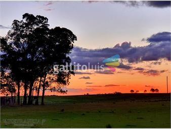 https://www.gallito.com.uy/2-campos-en-durazno-a-120-km-de-la-ciudad-inmuebles-19661669