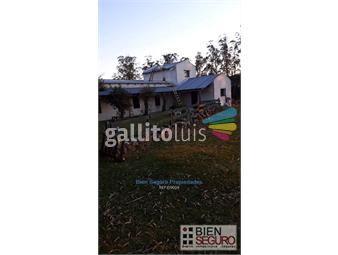 https://www.gallito.com.uy/muy-linda-chacra-de-33-88-has-en-venta-en-sierra-de-carape-inmuebles-19665153