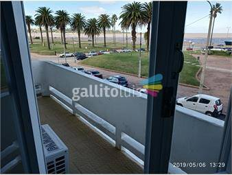 https://www.gallito.com.uy/frente-al-mar-inmuebles-19681604