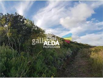 https://www.gallito.com.uy/terreno-en-playa-hermosa-inmuebles-15434109