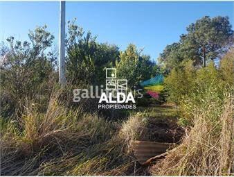 https://www.gallito.com.uy/terreno-en-punta-colorada-inmuebles-15649015