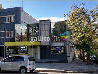 https://www.gallito.com.uy/local-esquina-en-alquiler-solano-garcia-y-güipuzcoa-inmuebles-19696110