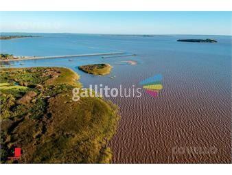 https://www.gallito.com.uy/terreno-con-costa-a-rio-playa-desarrollo-turistico-proy-inmuebles-19280004