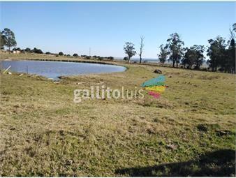 https://www.gallito.com.uy/campo-en-lavalleja-venta-235-hectareas-inmuebles-19479975